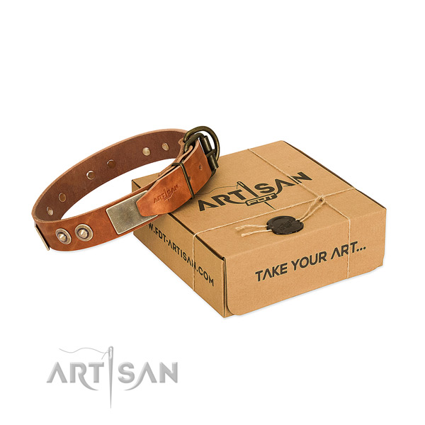 Rust-proof hardware on dog collar for stylish walking