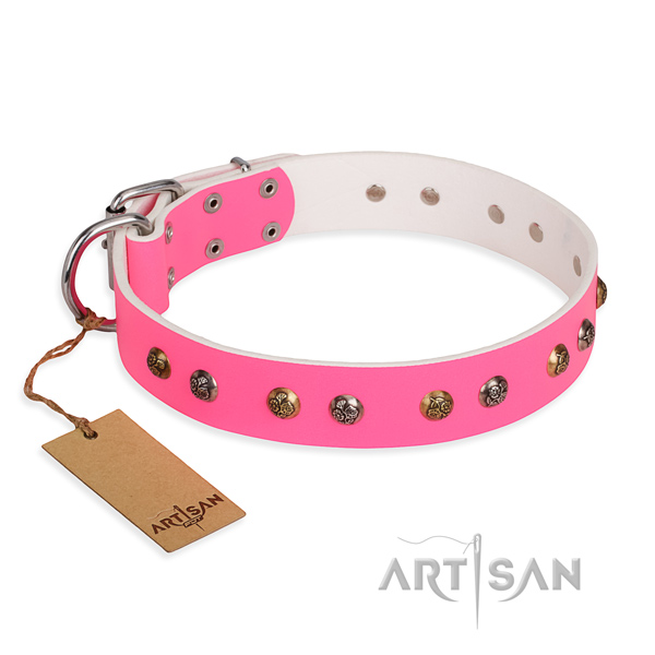 Daily use incredible dog collar with reliable hardware