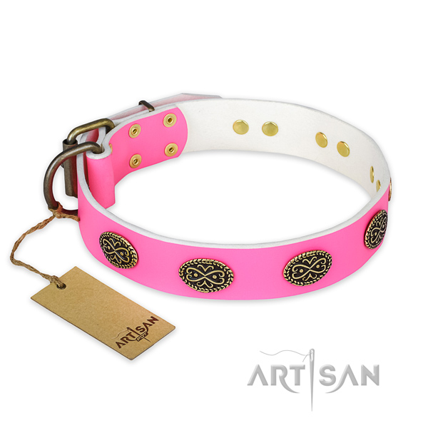 Fashionable full grain natural leather dog collar for everyday walking