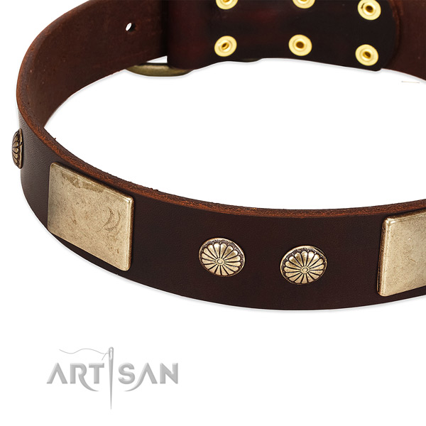 Rust-proof D-ring on genuine leather dog collar for your canine