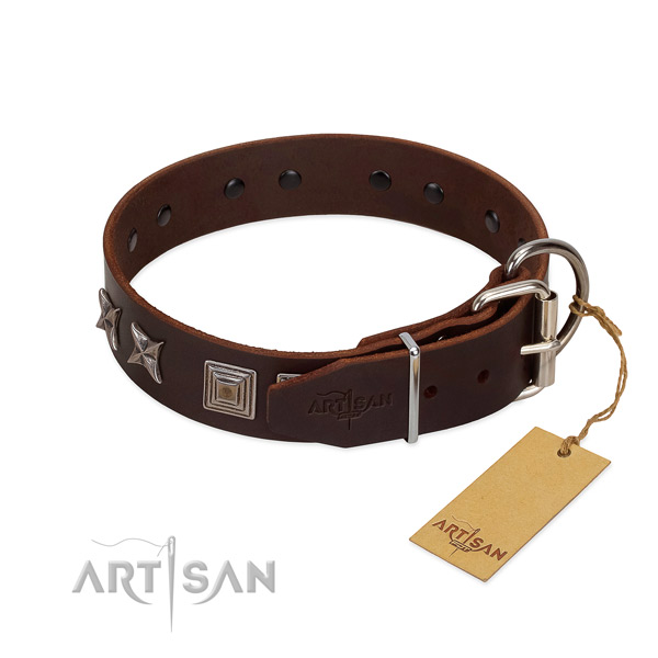 Genuine leather dog collar with unique studs for your canine