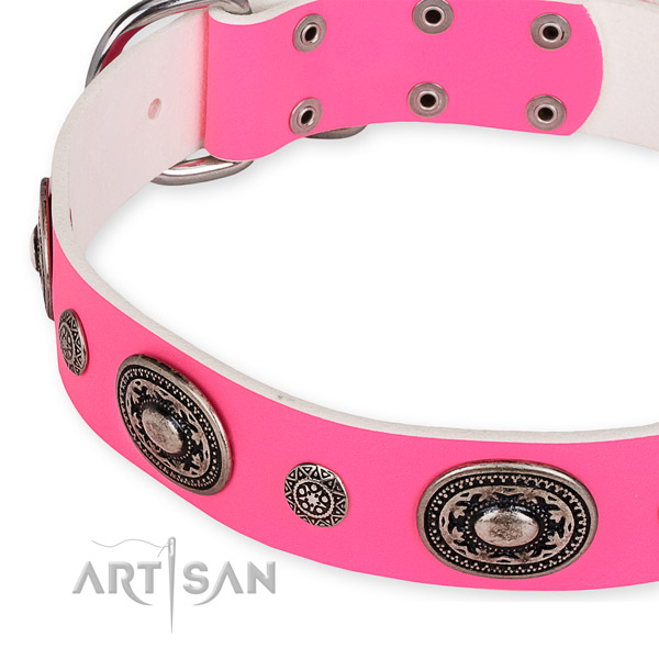 Natural genuine leather dog collar with designer strong embellishments