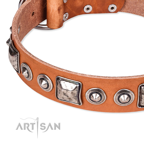 Quality genuine leather dog collar handmade for your beautiful dog