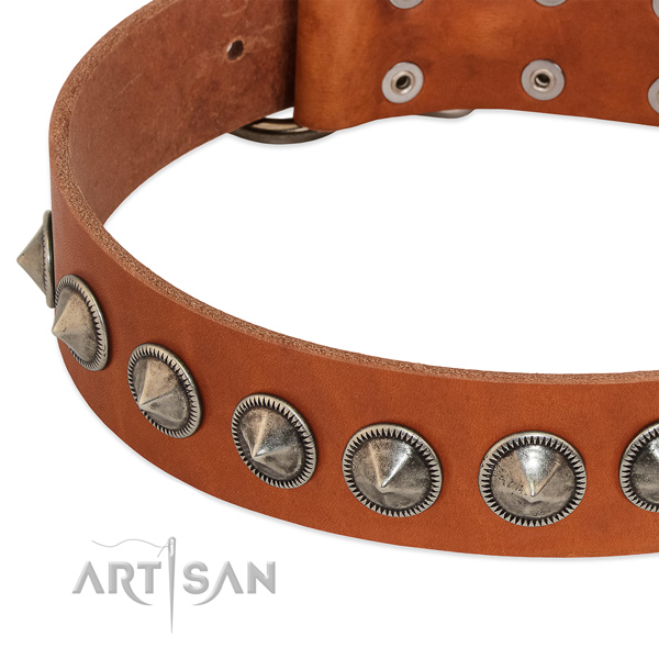 Handy use embellished leather collar for your pet