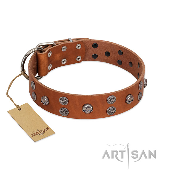 High quality genuine leather dog collar with decorations for stylish walking