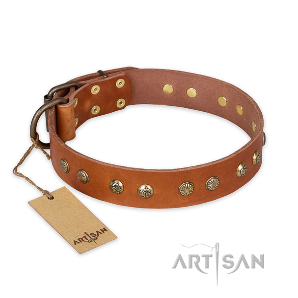 Awesome genuine leather dog collar with rust resistant hardware