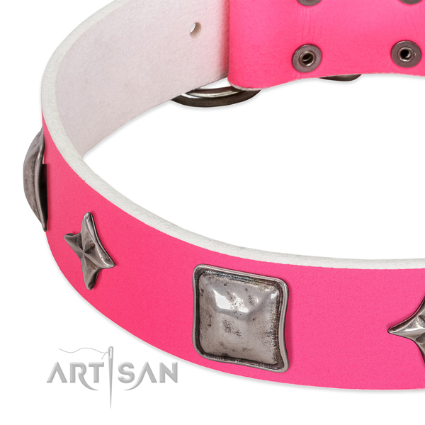 Impressive full grain natural leather dog collar with strong adornments