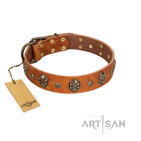 Top notch full grain leather collar for your four-legged friend