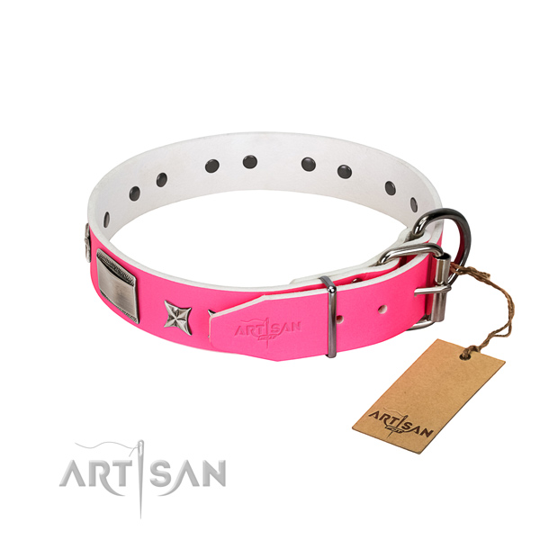 Adorned collar of full grain natural leather for your doggie