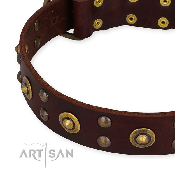 Full grain natural leather collar with corrosion resistant D-ring for your handsome pet