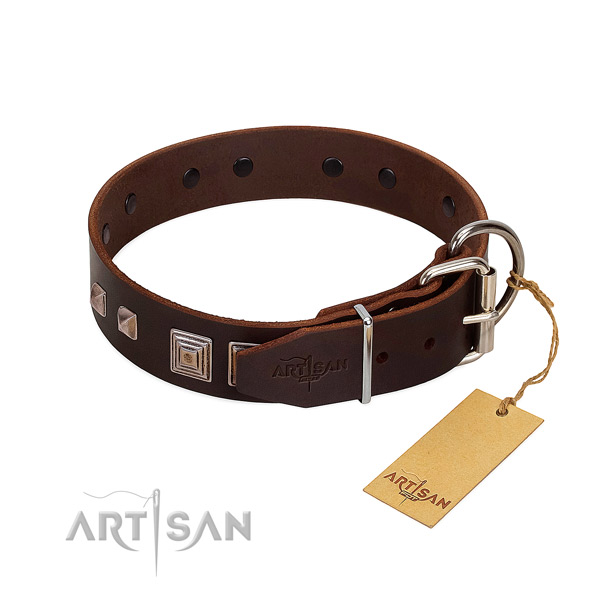 Comfortable wearing natural leather dog collar with awesome adornments