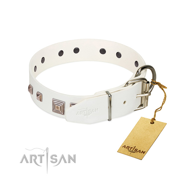 Exquisite collar of full grain natural leather for your handsome canine