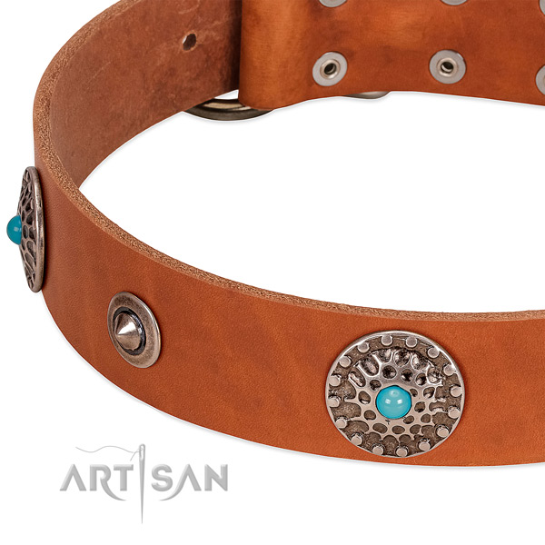 Everyday use top notch full grain genuine leather dog collar with adornments