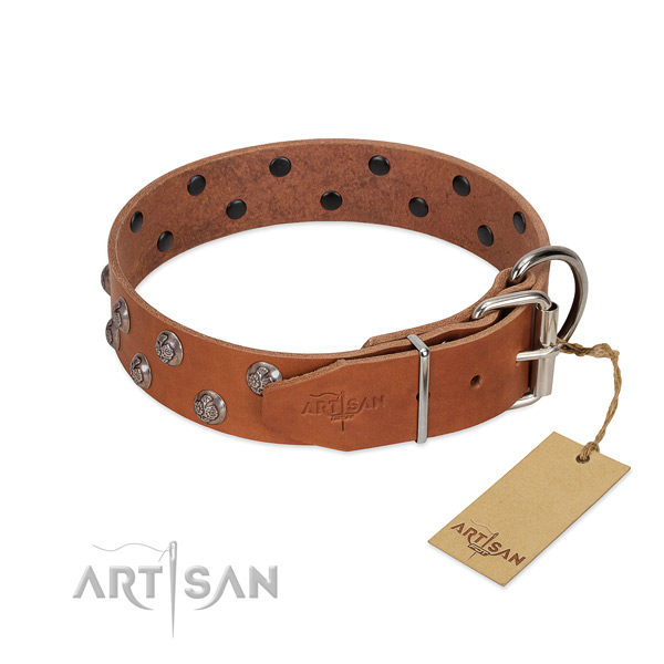 Durable D-ring on embellished full grain natural leather dog collar