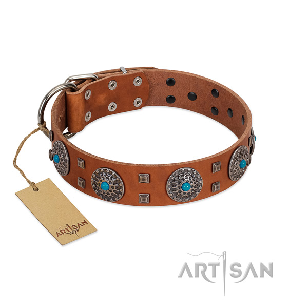 Handy use leather dog collar with inimitable studs