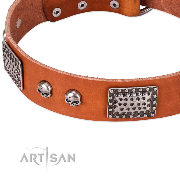 Corrosion proof fittings on full grain genuine leather dog collar for your four-legged friend