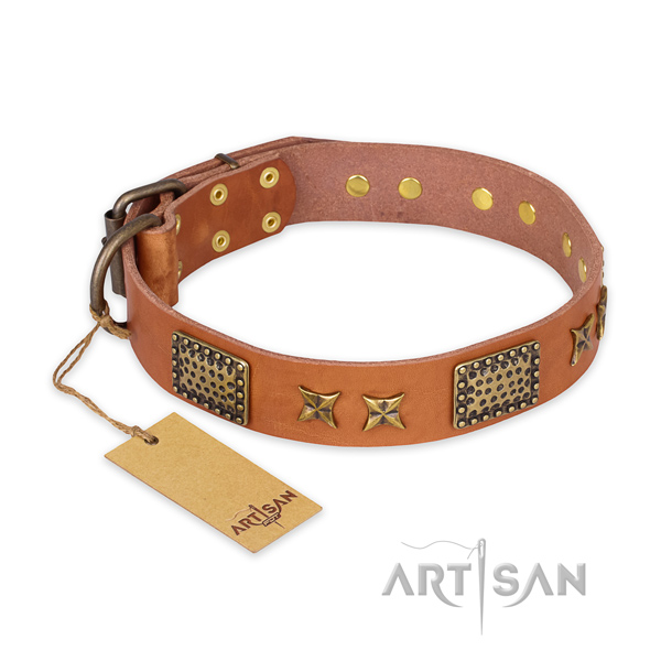 Incredible full grain natural leather dog collar with reliable fittings