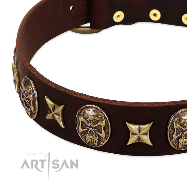 Reliable studs on genuine leather dog collar for your canine