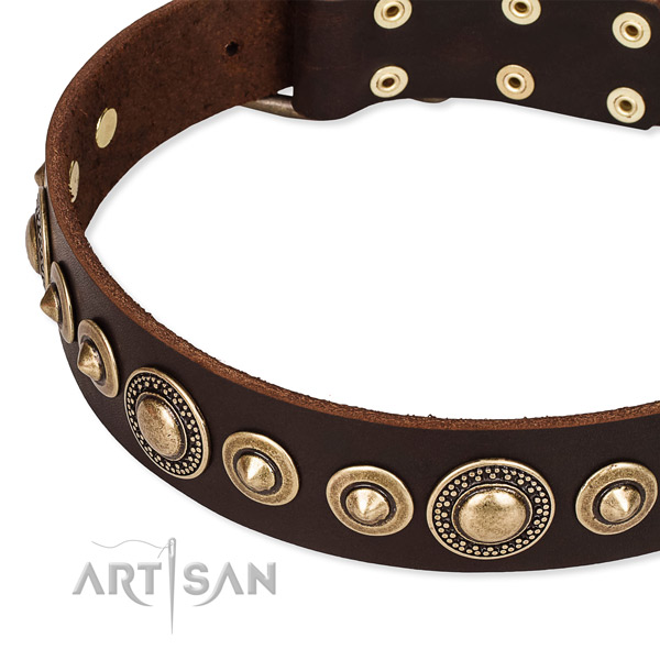 Durable full grain genuine leather dog collar created for your impressive four-legged friend