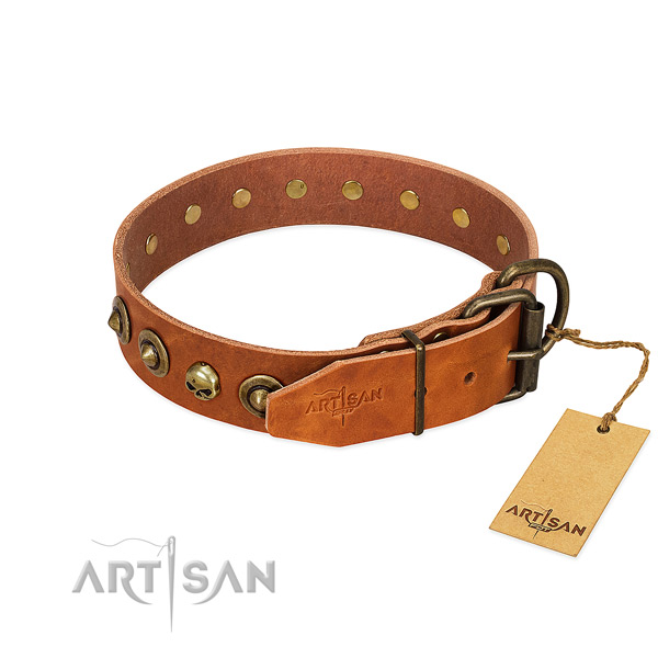 Full grain natural leather collar with remarkable studs for your canine