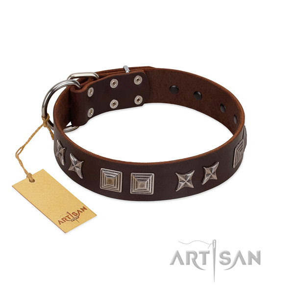 Full grain leather dog collar with exquisite adornments made dog