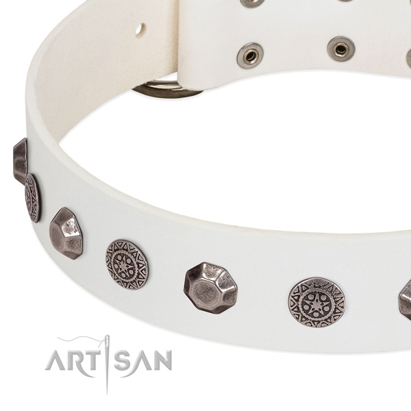 Inimitable genuine leather collar for your doggie everyday walking