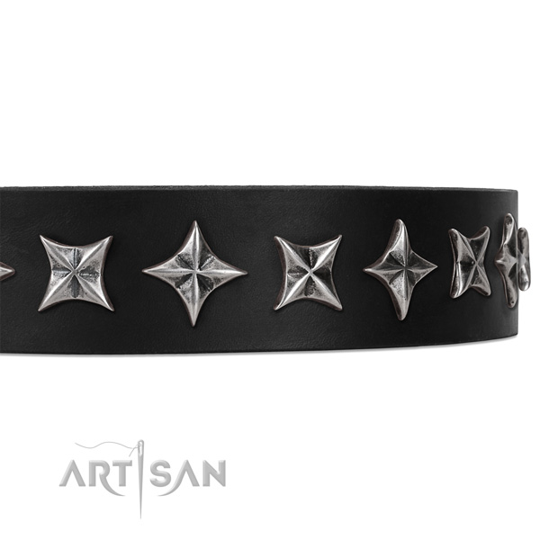 Walking studded dog collar of finest quality full grain leather