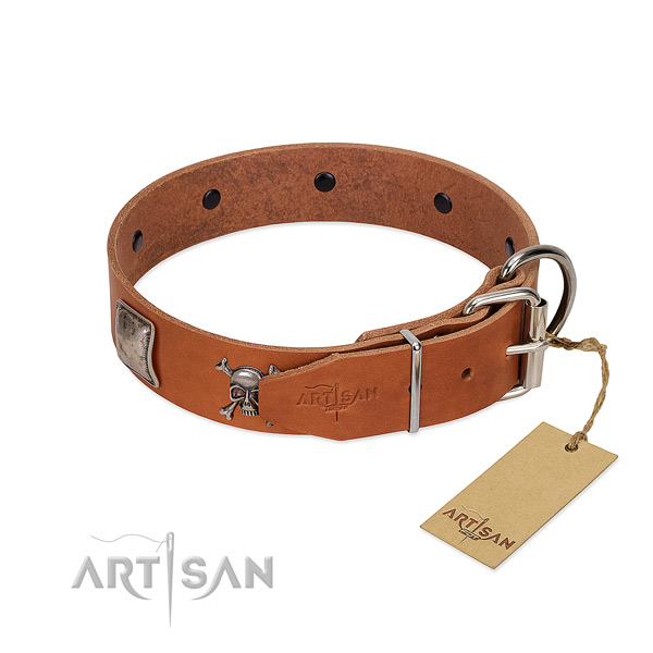 Remarkable genuine leather collar for your attractive canine