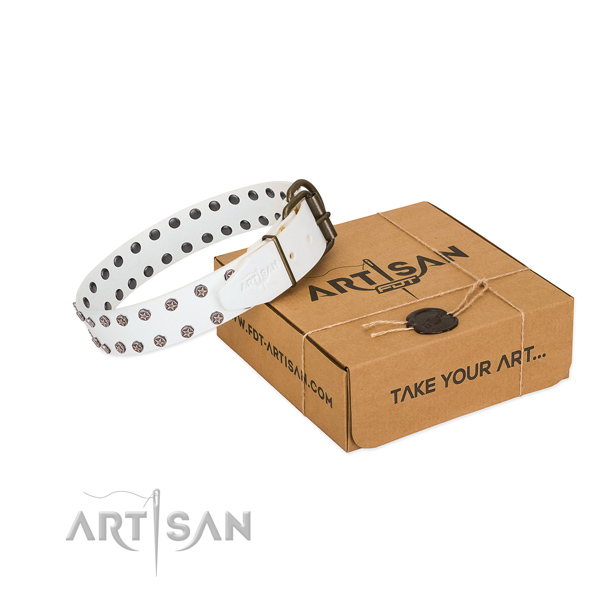 Soft leather dog collar with embellishments for your beautiful canine