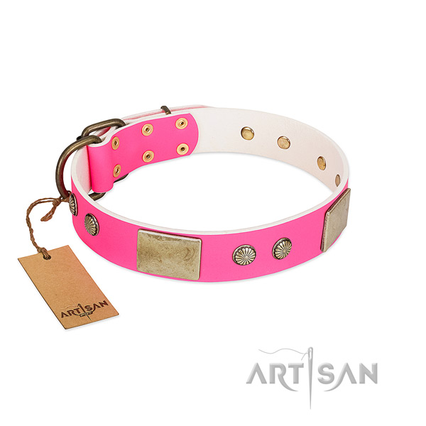 Adjustable leather dog collar for stylish walking your dog