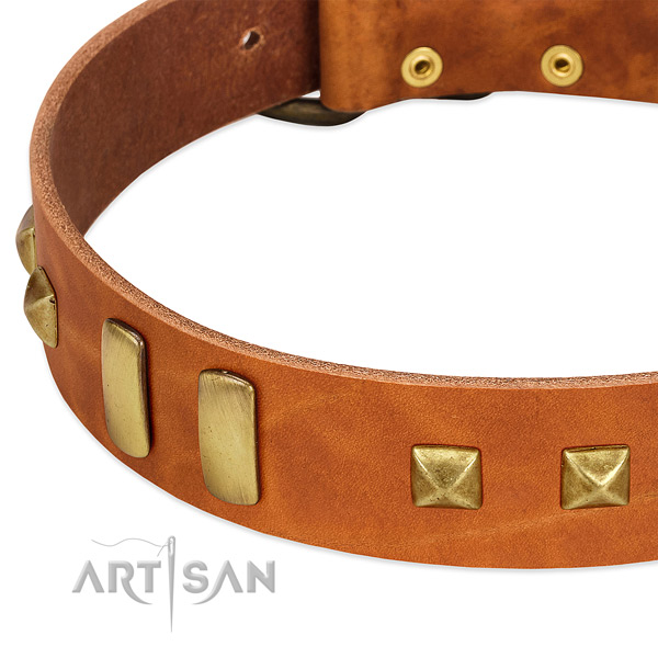 High quality full grain leather dog collar with decorations for daily use