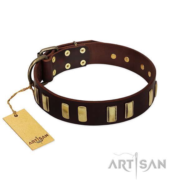 Full grain leather dog collar with corrosion resistant fittings for comfortable wearing