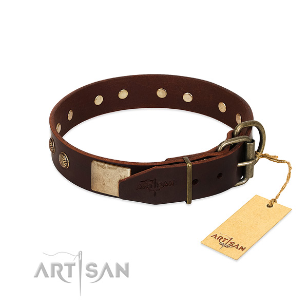 Durable decorations on daily walking dog collar