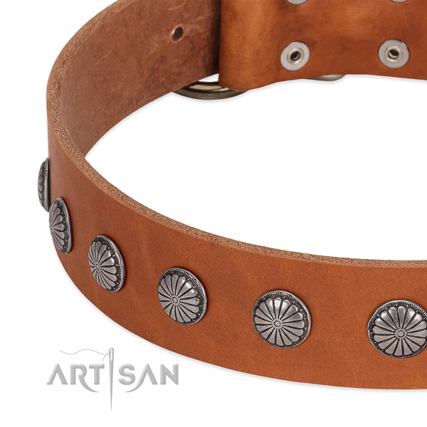 Flexible full grain natural leather dog collar with embellishments for easy wearing