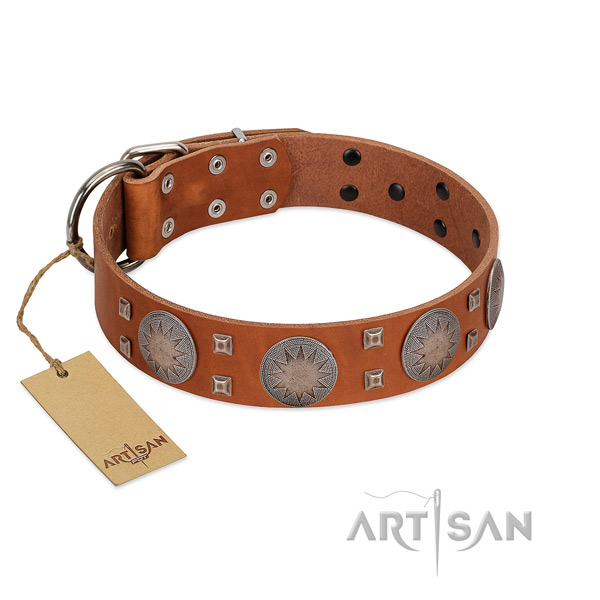 Inimitable leather collar for your beautiful four-legged friend