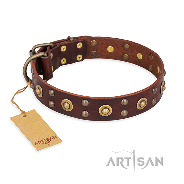 Unique genuine leather dog collar with rust resistant traditional buckle
