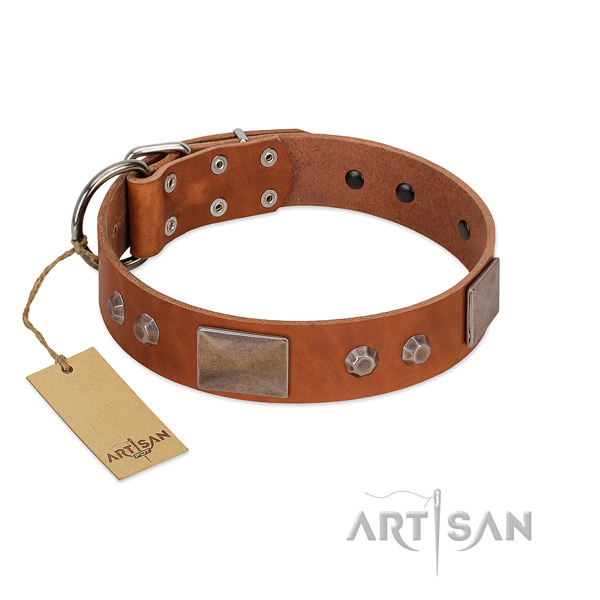 Handcrafted leather collar for your handsome four-legged friend