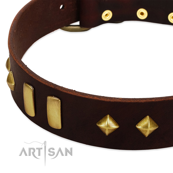 Top rate full grain natural leather dog collar with exquisite decorations