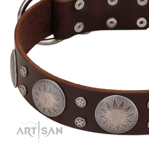 Top rate full grain leather dog collar with decorations for your stylish pet
