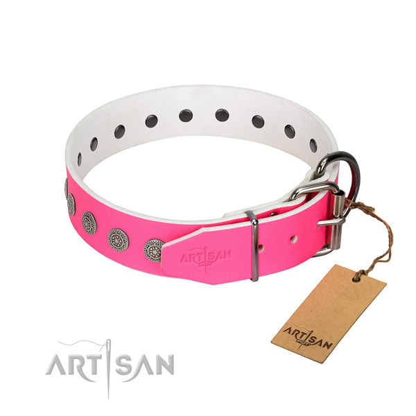 Fashionable studs on full grain leather collar for comfy wearing your doggie
