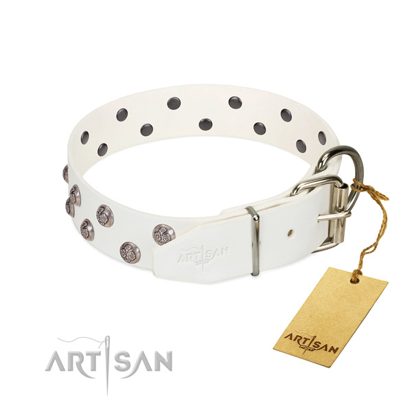 Corrosion proof fittings on studded full grain genuine leather dog collar
