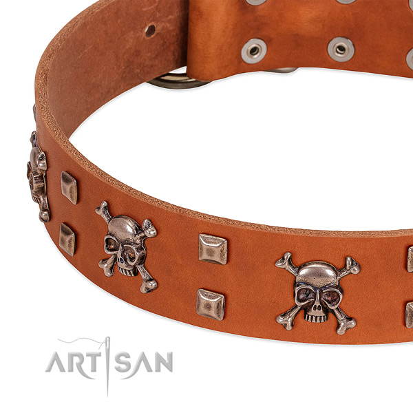Easy wearing leather collar for your four-legged friend