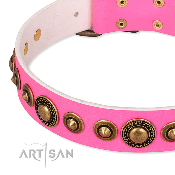 Soft full grain leather dog collar crafted for your beautiful pet
