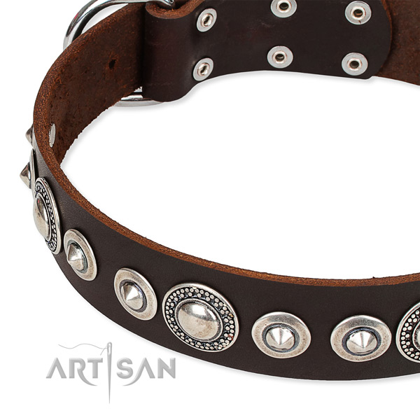 Daily use embellished dog collar of top quality full grain genuine leather