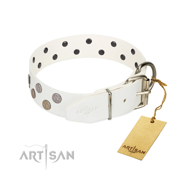 Amazing embellishments on natural leather collar for your dog