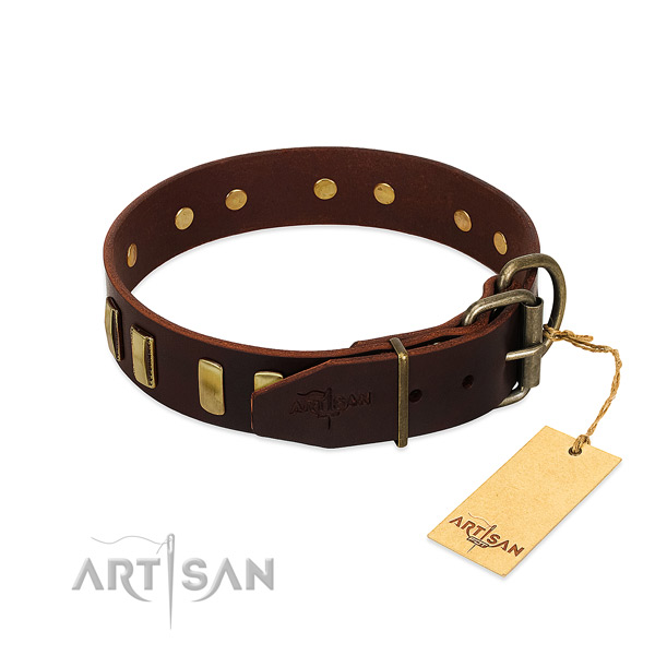 Full grain genuine leather dog collar with rust resistant traditional buckle for walking