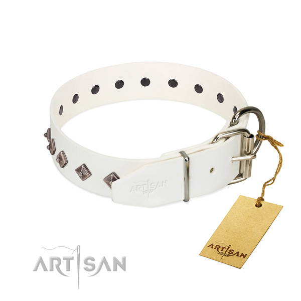 Remarkable adornments on genuine leather collar for fancy walking your dog