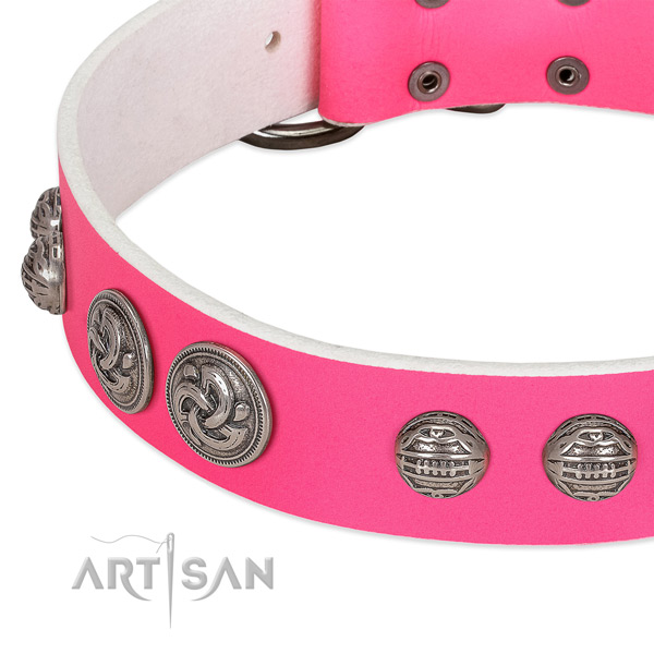 Reliable traditional buckle on genuine leather collar for fancy walking your four-legged friend