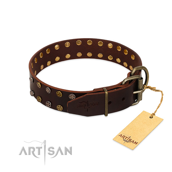 Fancy walking leather dog collar with exquisite adornments