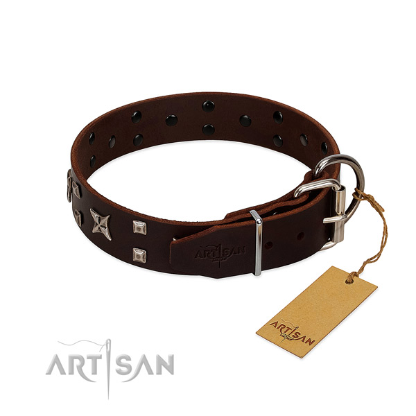 High quality leather collar created for your canine